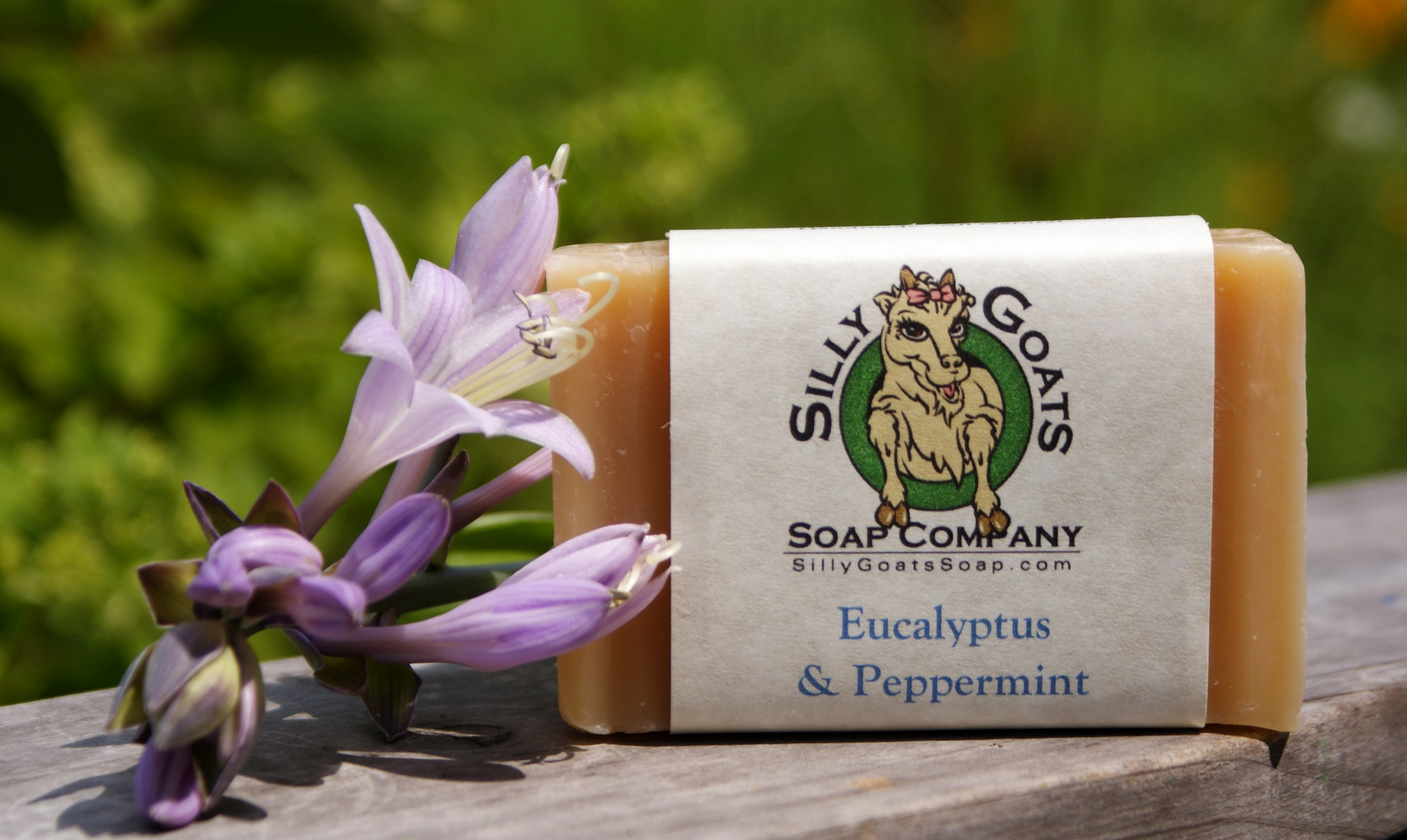 Eucalyptus and Peppermint, Goats Milk Soap