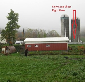 Silly Goats Soap Co. -Back of Jems Pasture - Edited