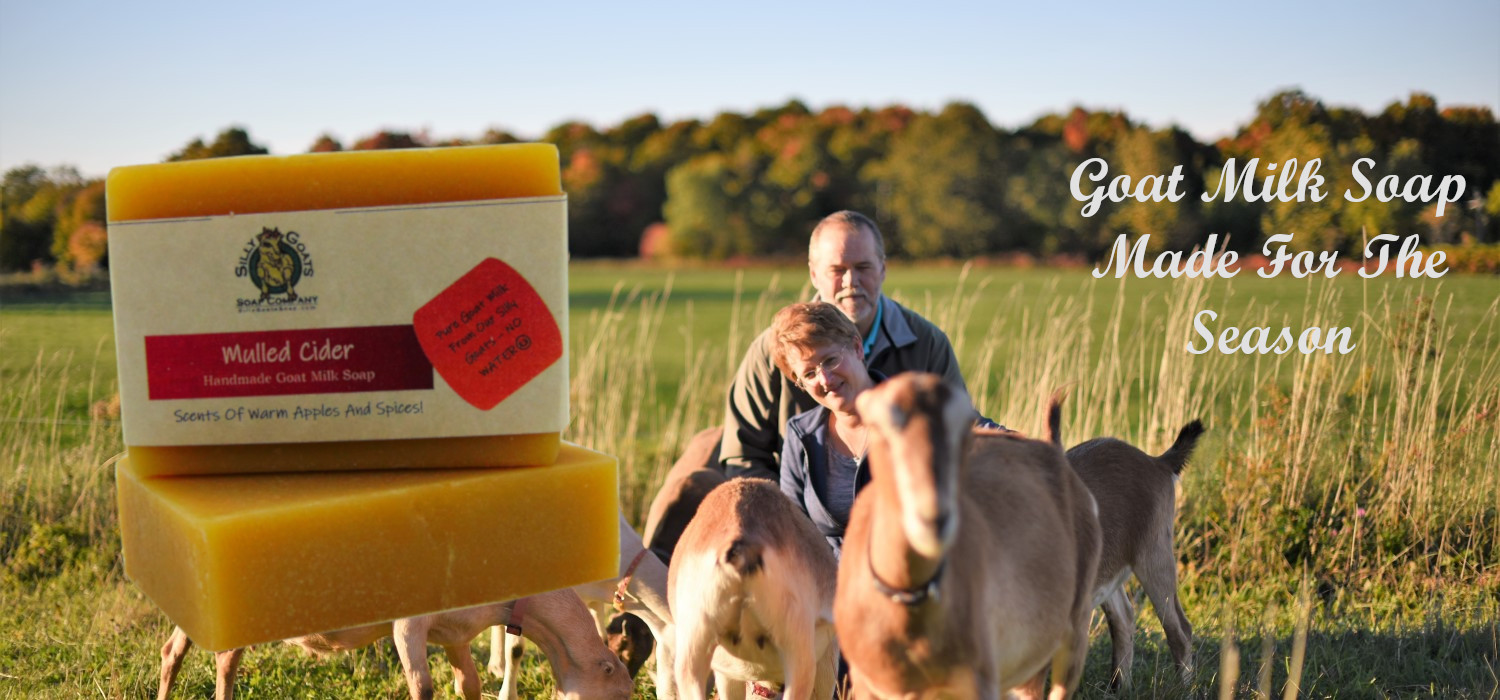 Seasonal Goat Milk Soap from Silly GoatsSoap Company